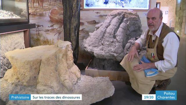 Empreinte Dinosaure