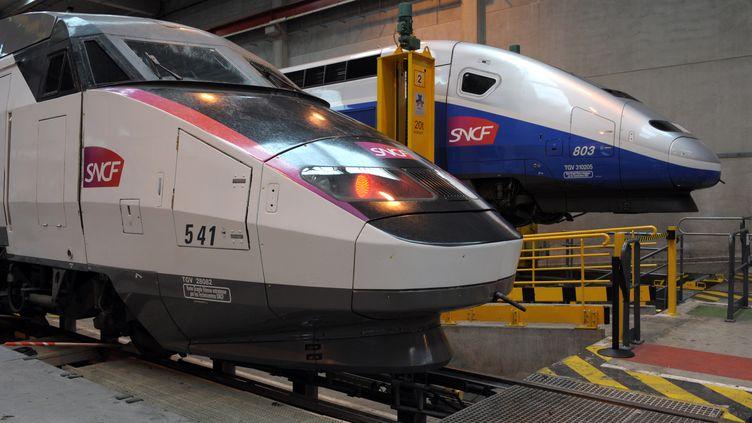 TGV en maintenance au Technicentre Est Européen, àPantin (Seine-Saint-Denis), le 11 octobre 2013. (ERIC PIERMONT / AFP)