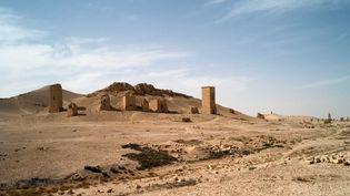 """Palmyre, les tours funéraires de la nécropole de la """"Vallée des tombeaux"""", dans un cliché de 2010.  (DELACOUCHY/SIPA)"""