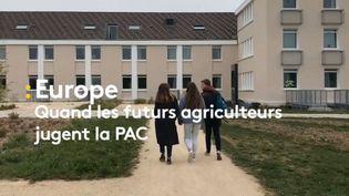Les jeunes du lycée agricole de Saint-Germain en Laye souhaitent que la PAC soutienne plus l'agriculture raisonnée et respectueuse de l'environenment. (NOEMIE BONNIN / RADIO FRANCE)