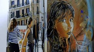 Après la rue et les expositions, le street-artist C215 fait aujourd'hui l'objet d'un ouvrage chez Albin Michel  (France 3 / Culturebox / capture d'écran)