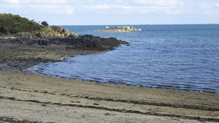 La plagede Roscoff, en Bretagne. (MAXPPP)