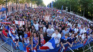 Des supporters de l'équipe de France lors du match France-Islande à Toulouse (Haute-Garonne), le 3 juillet 2016. (MAXPPP)