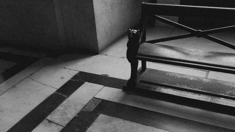 Le Palais de justice de Paris, lors du procès des attentats du 13-Novembre. (DAVID FRITZ-GOEPPINGER POUR FRANCEINFO)