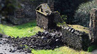 Mur d'une sépulture découvert endommagé à Pompéi, découvert le 2 mars 2014  (Mario Laporta / AFP)