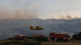 Les pompiers luttent contre les flammes, près de Marseille, le 5 septembre 2016. (MAXPPP)