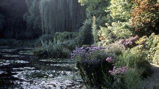 Jardin de Claude Monet à Giverny  (PHOTO12)