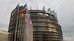 Façade du Parlement Européen de Strasbourg avec des drapeaux des différents pays de l'Union Européenne. Mars 2019. (FRANÇOIS SAUVESTRE / FRANCE-BLEU PICARDIE)