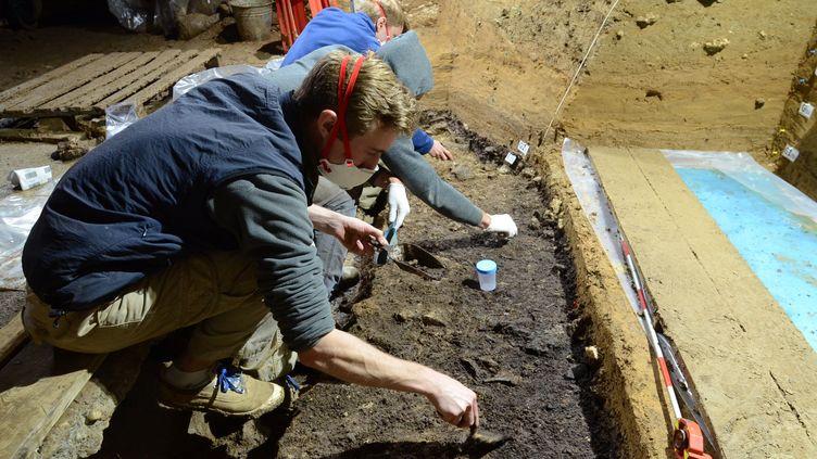 Des chercheurs font des fouilles dans la grotte de Bacho Kiro, en Bulgarie, où des os d'Homo sapiens datant d'environ 45 000 ans ont été retrouvés, le 11 mai 2020. (REUTERS)