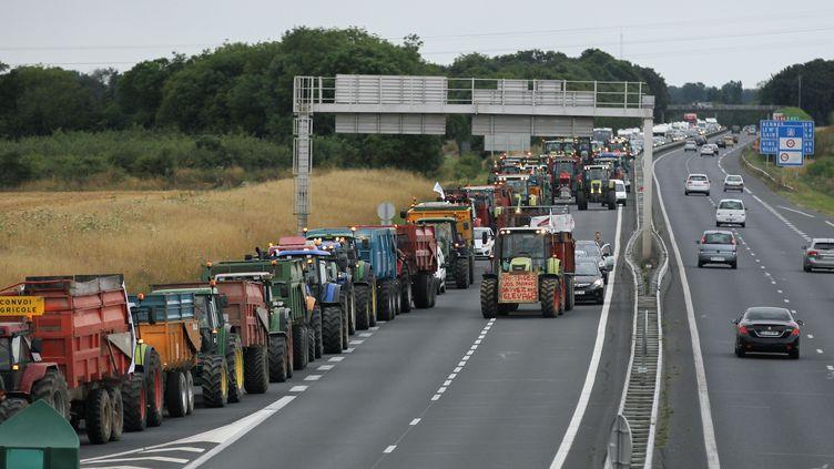 Une opération escargot des éleveurs normands sur l'A84, près de Caen (Calvados), le 19 juillet 2015. (CHARLY TRIBALLEAU / AFP)