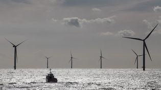 Illustration : des éoliennes en pleine mer, au large du Danemark, en septembre 2016. (FRANCOIS LEPAGE / MAXPPP)