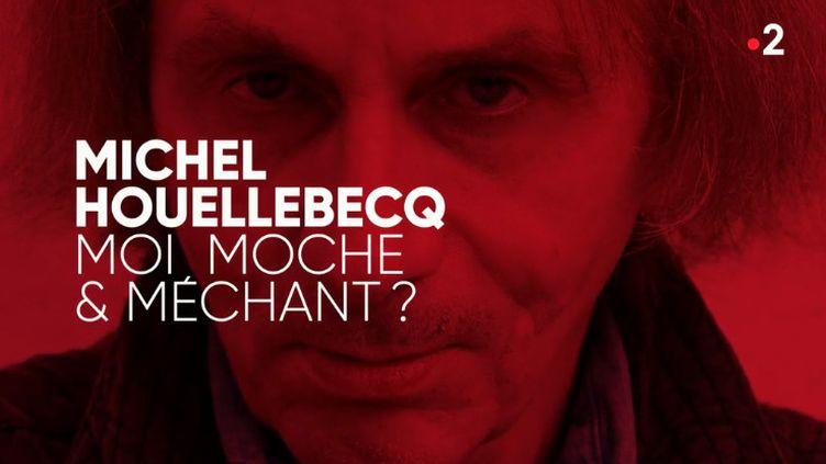 """""""Complément d'enquête"""". Michel Houellebecq : """"Moi, moche et méchant ?""""  (COMPLÉMENT D'ENQUÊTE/FRANCE 2)"""