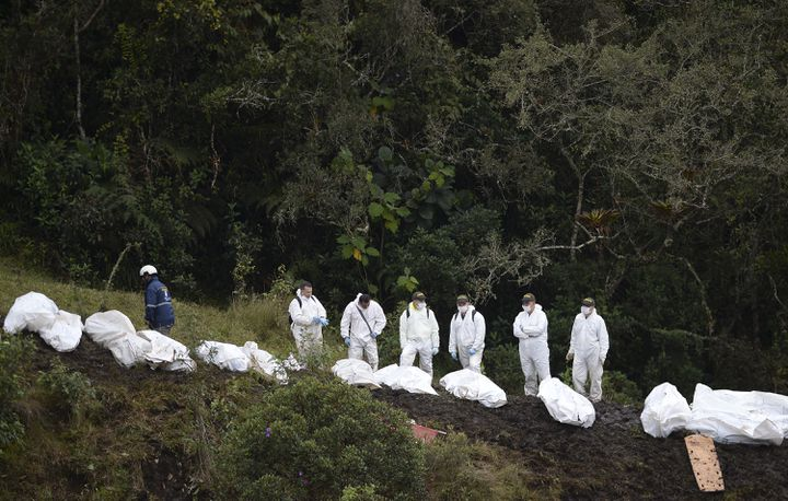 Des corps des victimes sont alignés par des secouristes sur le site du crash, le 29 novembre 2016, à La Union (Colombie). (RAUL ARBOLEDA / AFP)