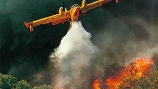 Un canadairs en action sur un feu de végétations proche de Gabian. (SDIS 34)