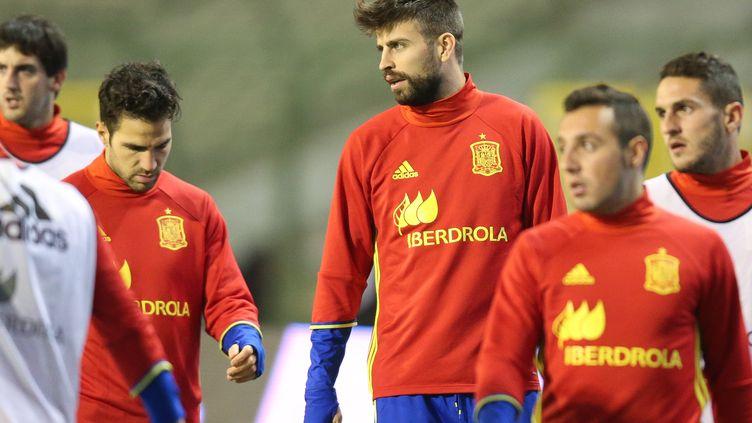 L'équipe d'Espagne de football lors d'un entraînement, le 16 novembre 2015, à la veille d'un match amical contre la Belgique qui a finalement été annulé. (BRUNO FAHY / BELGA MAG / AFP)