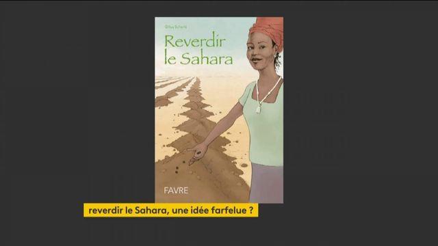 Environnement : reverdir le Sahara, une idée saugrenue ?
