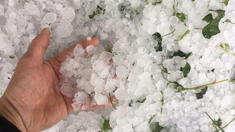 De violents orages, accompagnés de chutes de grêle, se sont abattus sur le département de la Loire, le 15 juin 2019. (MAXPPP)