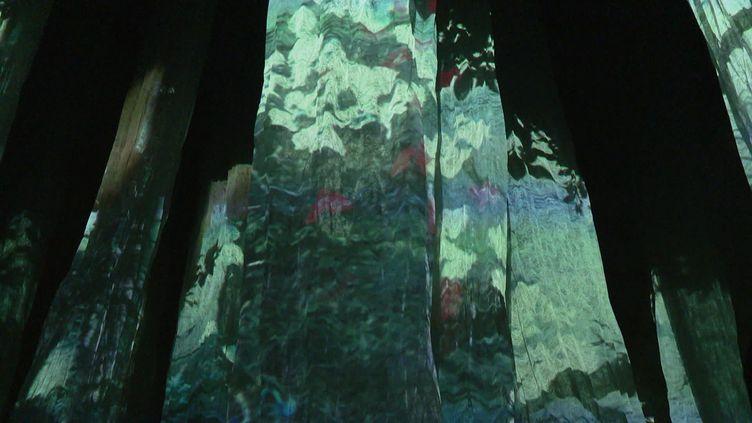 SYLVA, installation immersive à la collégiale Saint-Martin d'Angers (Gwenael Rihet - France 3)