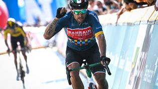 L'Italien Sonny Colbrelli a remporté les championnats d'Europe de cyclisme sur route à Trente, dimanche 12 septembre 2021. (DAVID STOCKMAN / BELGA / AFP)