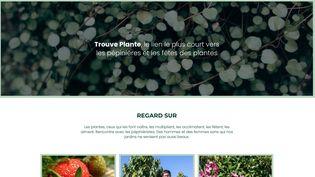 Trouve-plante.com est un site gratuit pour chercher (et trouver !) arbustes, bulbes, plantes vivaces, fruitiers etc. (ISABELLE MORAND / RADIO FRANCE / FRANCE INFO)