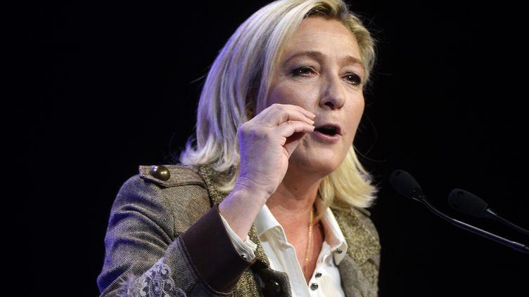 La présidente du FN, Marine Le Pen, le 17 novembre 2013 nors d'un meeting à Paris. (BERTRAND GUAY / AFP)
