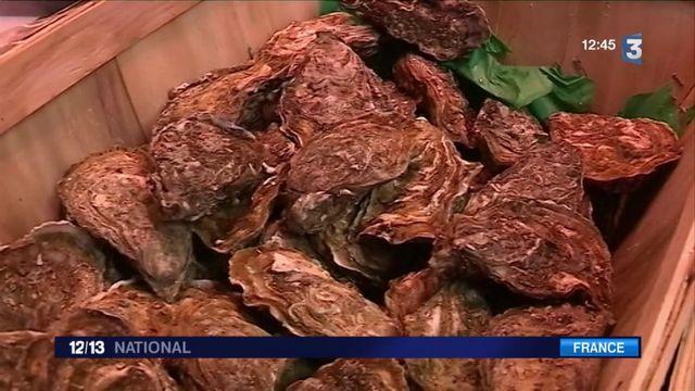 Huîtres : le business de l'emballage