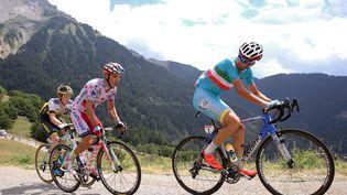 Le coureur italien Vincenzo Nibali pendant la 19e étape du Tour de France, le 24 juillet 2015. (DE WAELE TIM / TDWSPORT SARL / AFP)