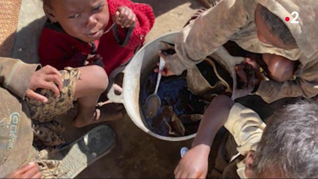 Madagascar: Famine caused by global warming