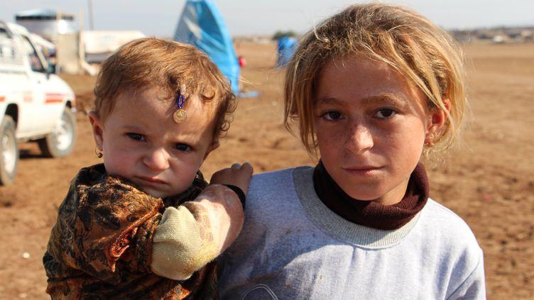 Des réfugiés yézidis qui ont fui l'Etat islamique en Irak, le 28 novembre 2014 à Al-Hasakah (Syrie). (AHMED IBRAHIM / ANADOLU AGENCY / AFP)
