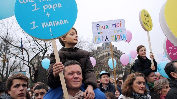Manifestation contre le mariage des homos et l'homoparentalité, samedi 17 novembre 2012. (THOMAS SAMSON / AFP)