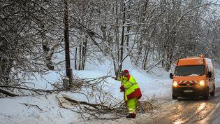 Un employé départemental ramasse des branches tombées sur la route sur le passage de la tempête Eleanor, le 4 janvier 2017,àSaint-Jean-de-Belleville (Savoie). (JEAN-PIERRE CLATOT / AFP)