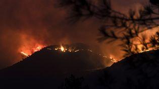Un incendie fait rage à Vavatsinia, sur le flanc sud du massif forestier du Troodos, sur l'île de Chypre, le 3 juillet 2021. (IAKOVOS HATZISTAVROU / AFP)