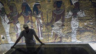 Un archéologue égyptien dans la tombe de Toutankhamon, septembre 2015  (KHALED DESOUKI / AFP)