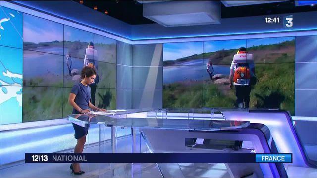 Moustique tigre : la chasse a commencé dans le sud de la France