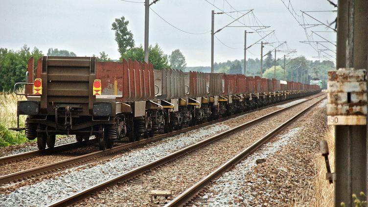 Un train de fret de la SNCF. Image d'illustration. (MAXPPP)