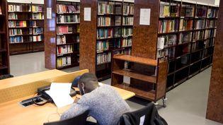 Un étudiant, dans une bibliothèque universitaire, à Evry, le 1er février 2016. (MAXPPP)