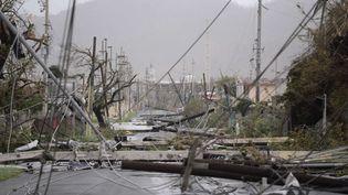 Des poteaux électriques enchevêtrés sur les routes, des arbres au sol... l'îledePorto Rico est défigurée, comme à Humacao. (CARLOS GIUSTI / SIPA)