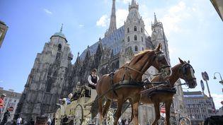La cathédrale Saint-Etienne à Vienne, en Autriche, le 3 septembre 2019. (JOE KLAMAR / AFP)