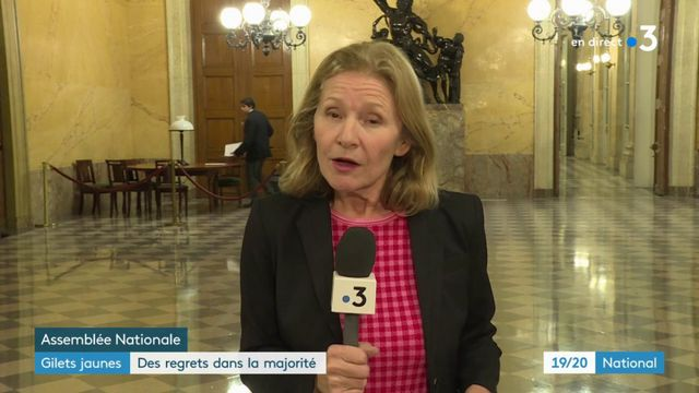 """""""Gilets jaunes"""" : des regrets dans la majorité"""