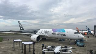 Au premier plan un prototype d'avion taxi électrique et derrière le gros-porteur A350, dernier-né des avions d'Airbus. (GRÉGOIRE LECALOT / FRANCEINFO)