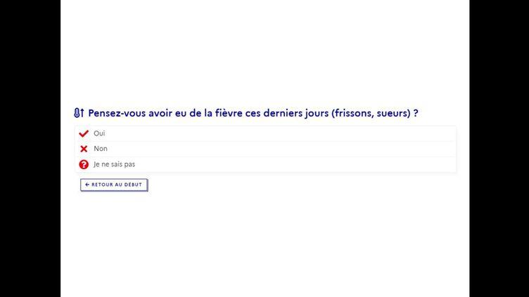 Capture d'écran du questionnaire sur le coronavirus mis en ligne par le gouvernement, le 8 avril 2020. (MINISTERE DE LA SANTE)