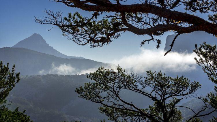 Le parc naturel régional du Verdon dans les Alpes-de-Haute-Provence (PHILIPPE CLÉMENT / BELPRESS/MAXPPP)