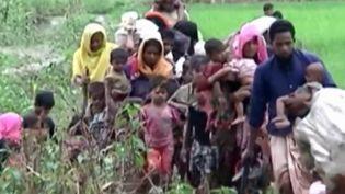 Les Rohingyas, minorité musulmane vivant en Birmanie subissent une très forte répression depuis des dizaines d'années. (France 2)