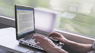 Selon la secrétaire d'Etat Axelle Lemaire, la SNCF compte lancer un appel d'offres pour mettre en place la 3G, la 4G et le wifi dans les trains. (CHRISTOPHE LEHENAFF / PHOTONONSTOP / AFP)
