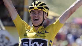 Le Britannique Chris Froome triomphe le 14 juillet 2015 àLa Pierre-Saint-Martin (Pyrénées-Atlantiques) sur la 10e étape du Tour de France. (STEFANO RELLANDINI / REUTERS)