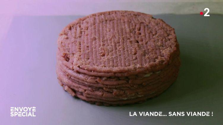 La viande... sans viande ! (ENVOYÉ SPÉCIAL  / FRANCE 2)