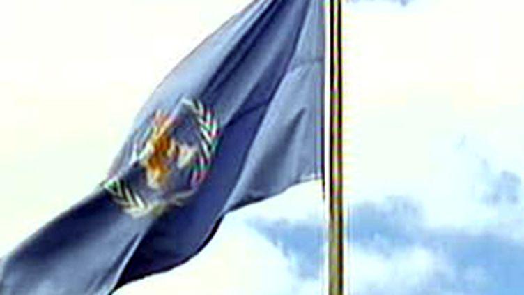 Le drapeau de l'Organisation mondiale de la santé (OMS) (F2)