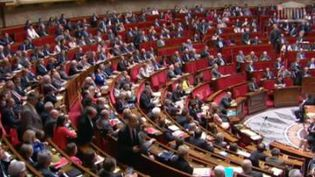 Les députés à l'Assemblée nationale. (CAPTURE D'ÉCRAN FRANCE 2)