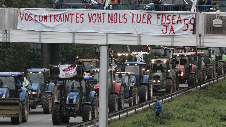 Manifestation d'agriculteurs et d'opposants à l'écotaxe près de Valenciennes (Nord), le 8 novembre 2013. (BAZIZ CHIBANE/SIPA)