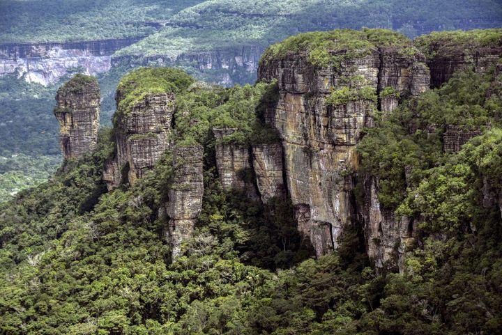 Le paysage environnant : la jungle amazonienne de laSerrania de Chiribiquete.  (GUILLERMO LEGARIA / AFP)